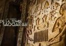 secrets-tombe-saqqarah