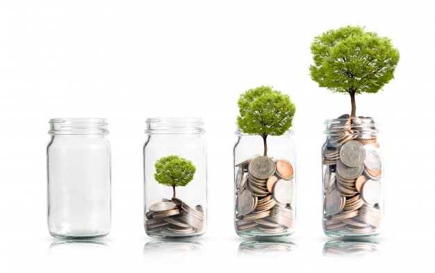 capital pour investir
